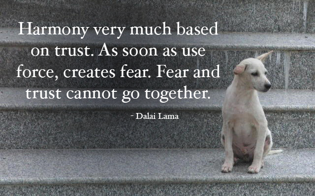 dog-dalai-lama-quote